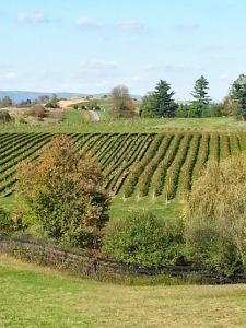 Barrel-Oak-Winery-Mid-Atlantic-Traveler